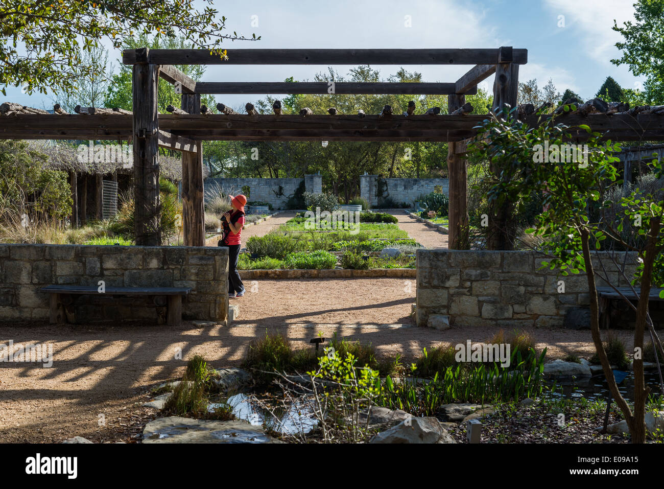 american southwest garden design at the lady bird johnson wildflower center austin texas usa
