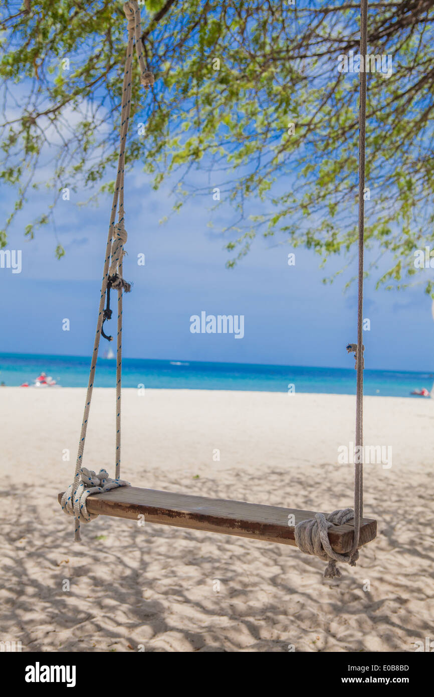 Swinging palm beach