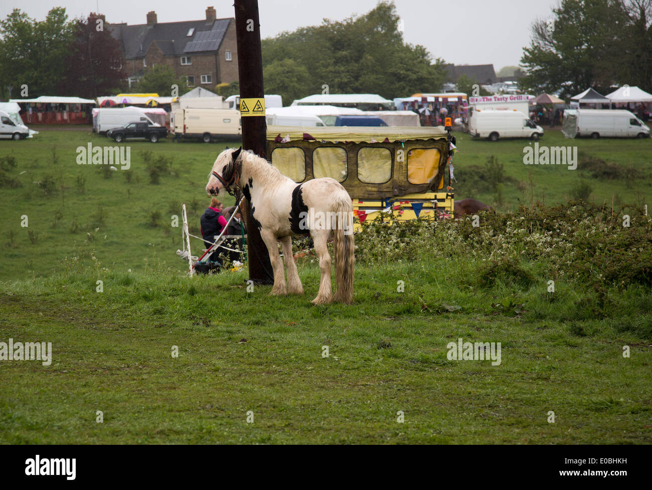 Gipsy Horse Fair Stock Photos &amp- Gipsy Horse Fair Stock Images - Alamy