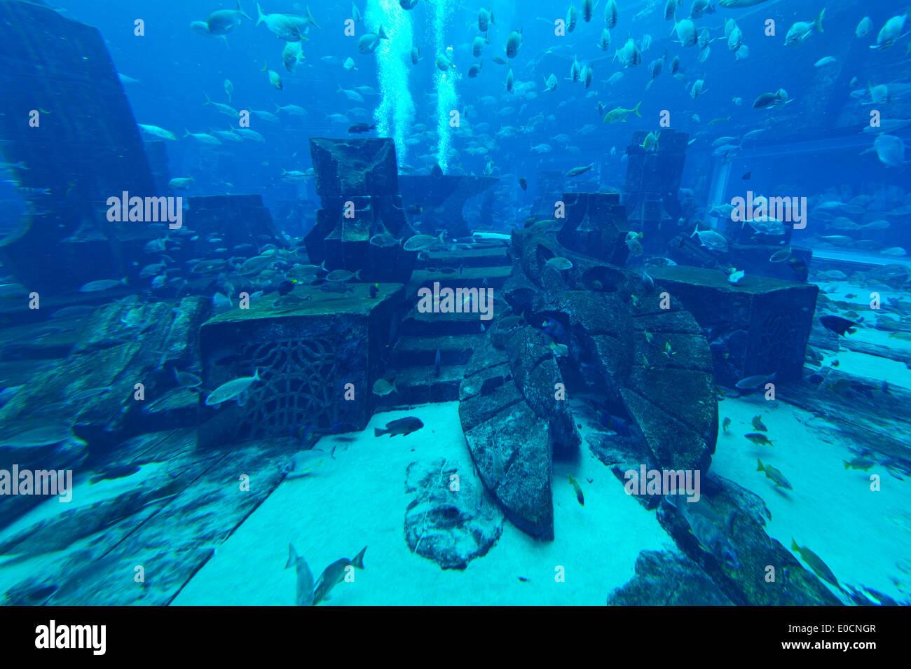 A Recreation Of Sea Life In A Gigantic Aquarium At The