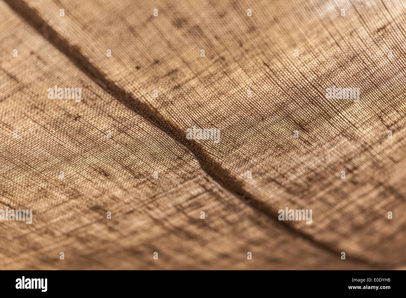 macro shot of the fabric of a tent in the desert & macro shot of the fabric of a tent in the desert Stock Photo ...