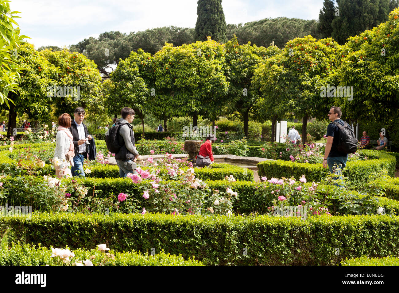 People In The Ancient Gardens Of The Domus Tiberiana, Palatine Hill, Rome  Forum, Rome Italy Europe