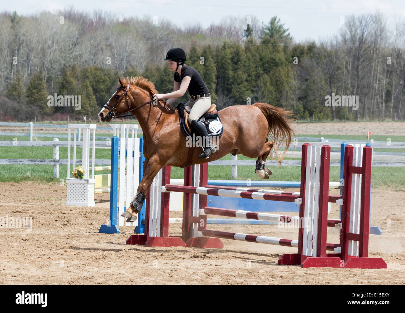 Teenage girl rider on chestnut horse jumping over oxer ... - photo#40