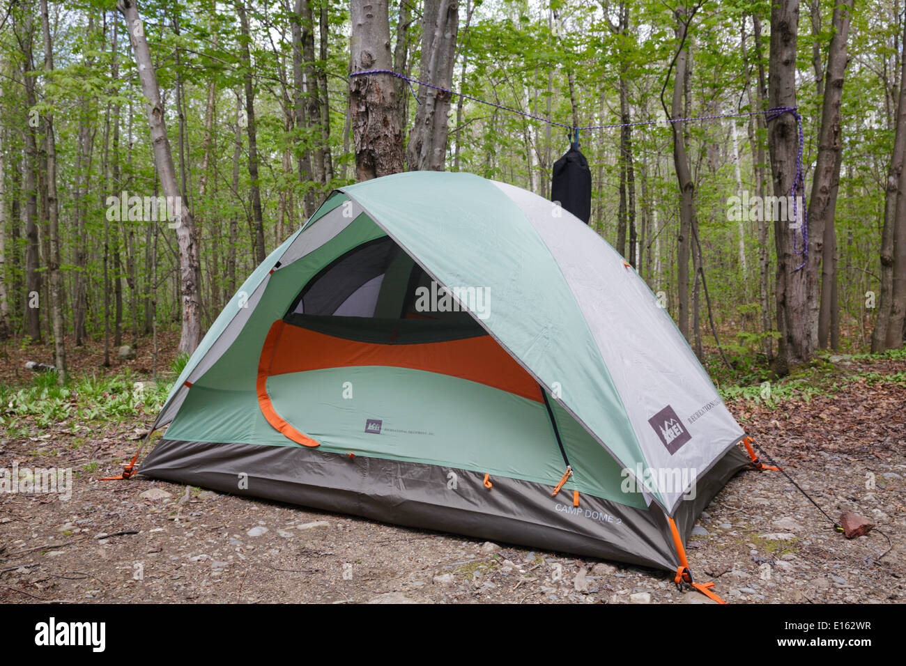 Tent setup in c&site at Gale River C&ground in the White Mountains New H&shire USA & Tent setup in campsite at Gale River Campground in the White Stock ...