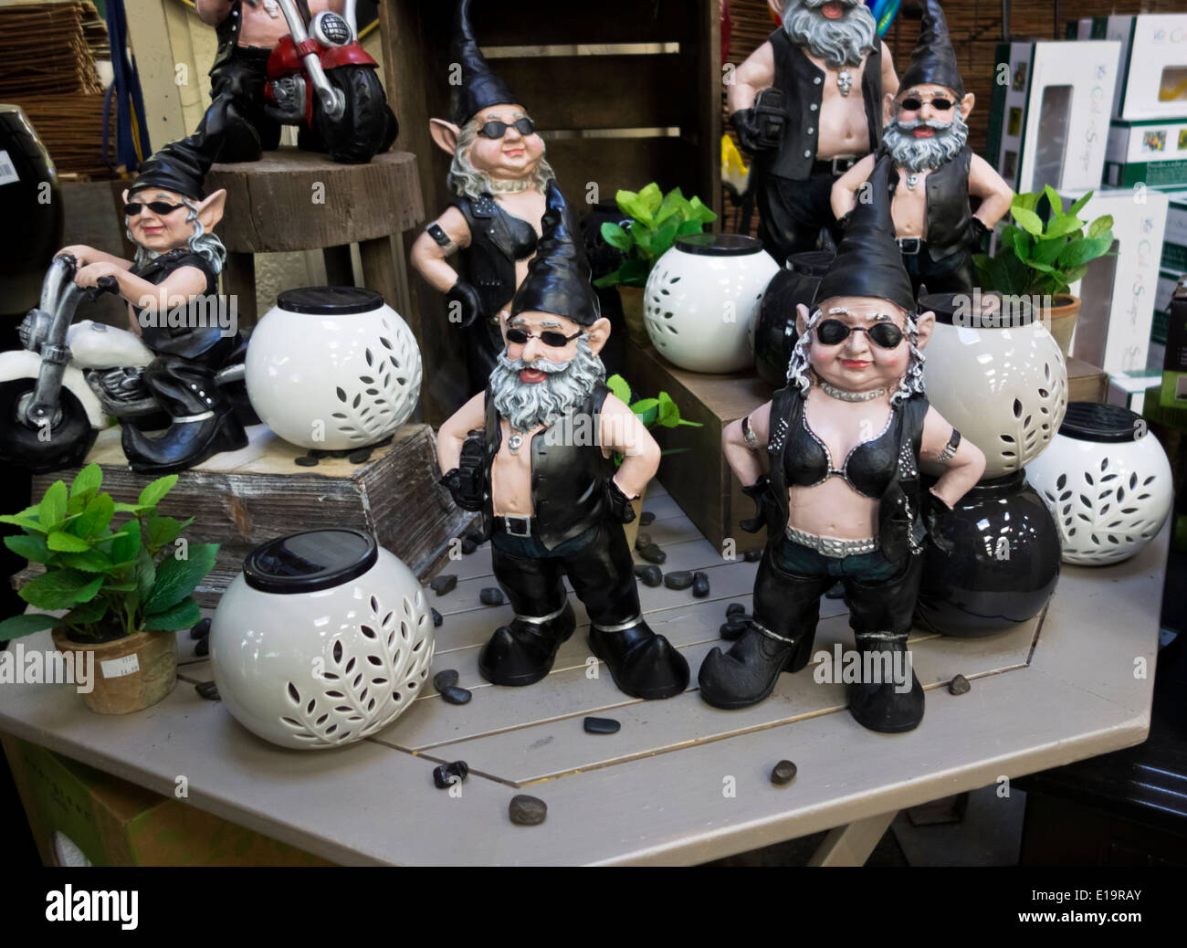 Amazing Biker Garden Gnomes Lawn Ornaments On Display In A Garden Center. Gnoschitt  And Gnofun Motorcycle