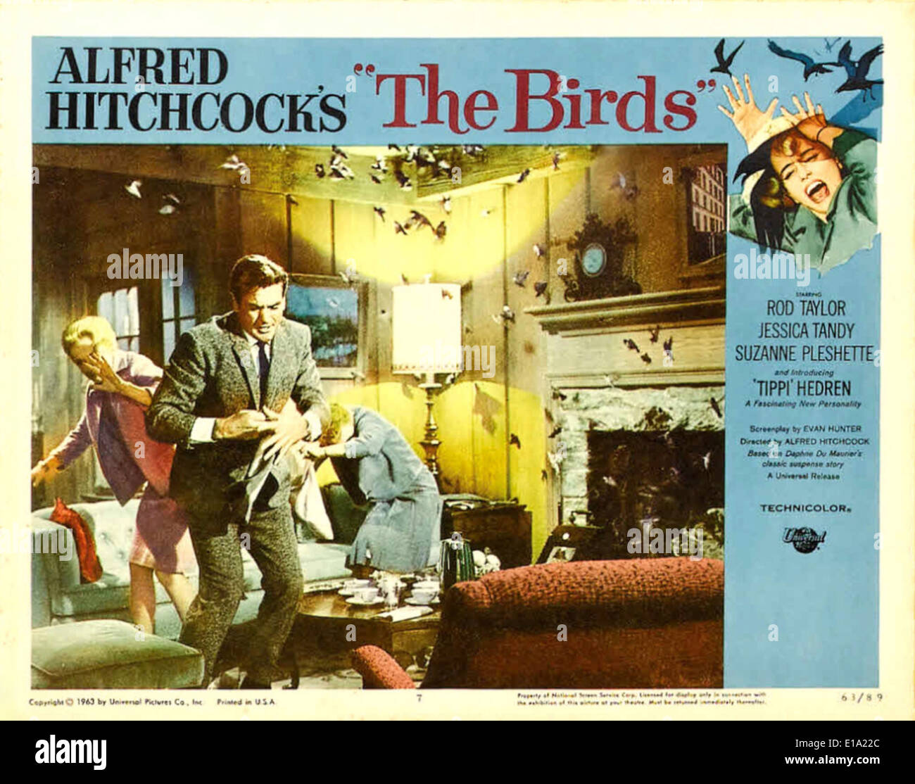 "a review of the birds a film by alfred hitchcock Tippi hedren and alfred hitchcock i'm reminded of a performance in a movie made just before ""the birds""—that of sign up for our culture review."