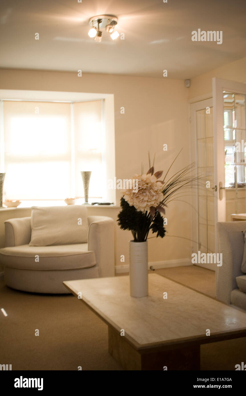 Stock Photo Modern Average House Home Decoration Decorated Average Typical Uk England English British Houses Rooms Interior Middle Class Hom