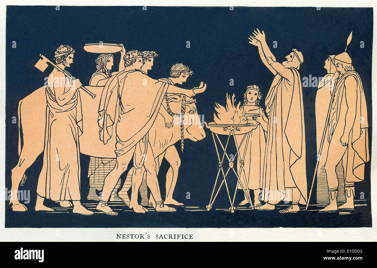 the conflict between telemachus and penelope in the tale of the greek warriors of troy Free essays & term papers - the disagreement between telemachus and penelope, mythology.