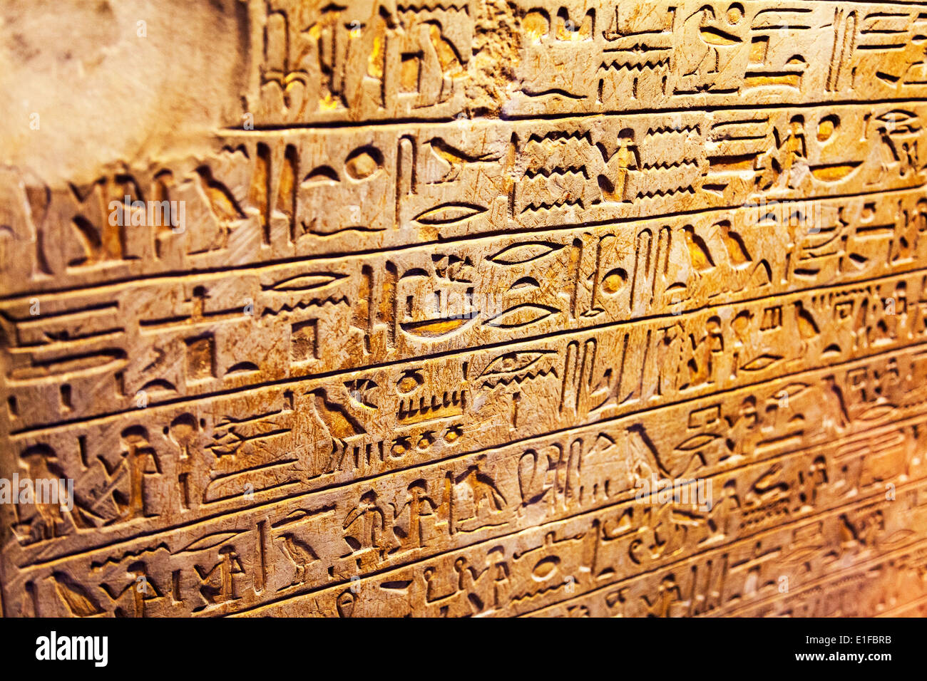 the hieroglyphs of ancient egypt essay Free essay on ancient history of the hieroglyphics available totally free at echeatcom, the largest free essay community.