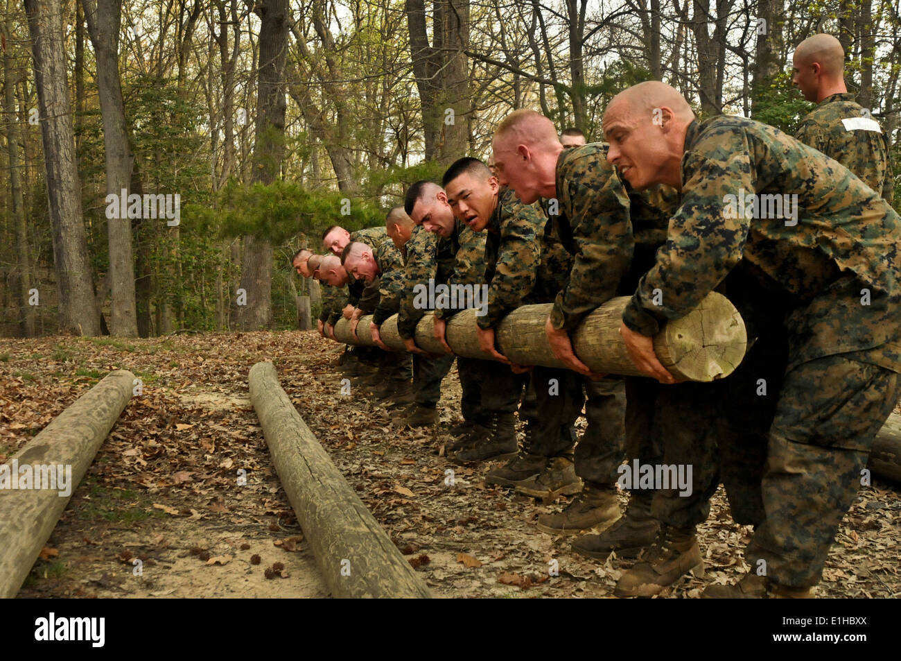 U.S. Marine Corps officer candidates with Charlie Company, Officer ...