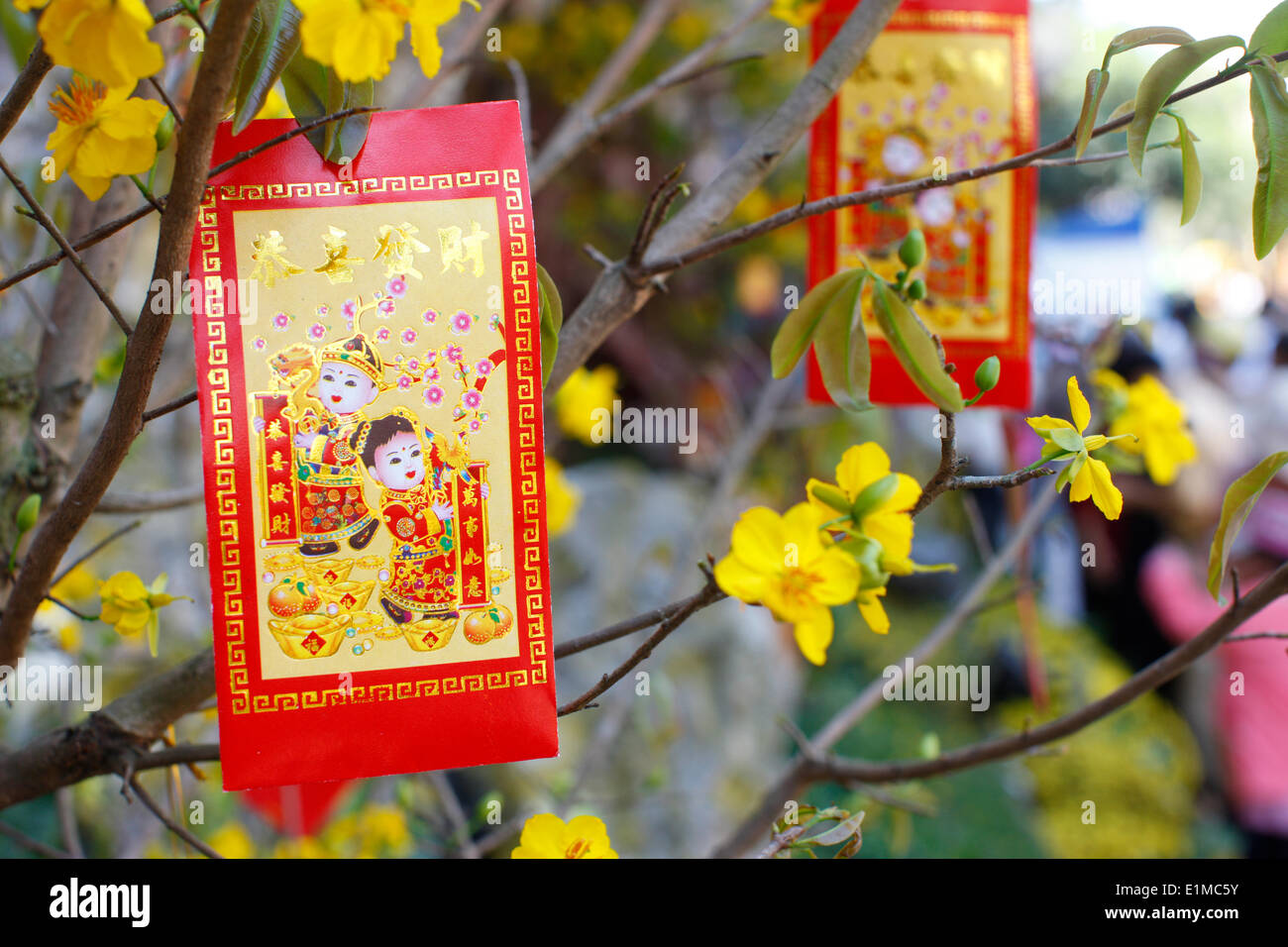 Chinese new year decorations hung on a yellow tree for good luck decorations hung on a yellow tree for good luck and fortune biocorpaavc