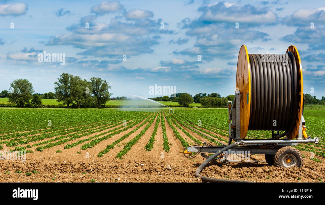 Example of modern irrigation system Stock Photo, Royalty Free ...