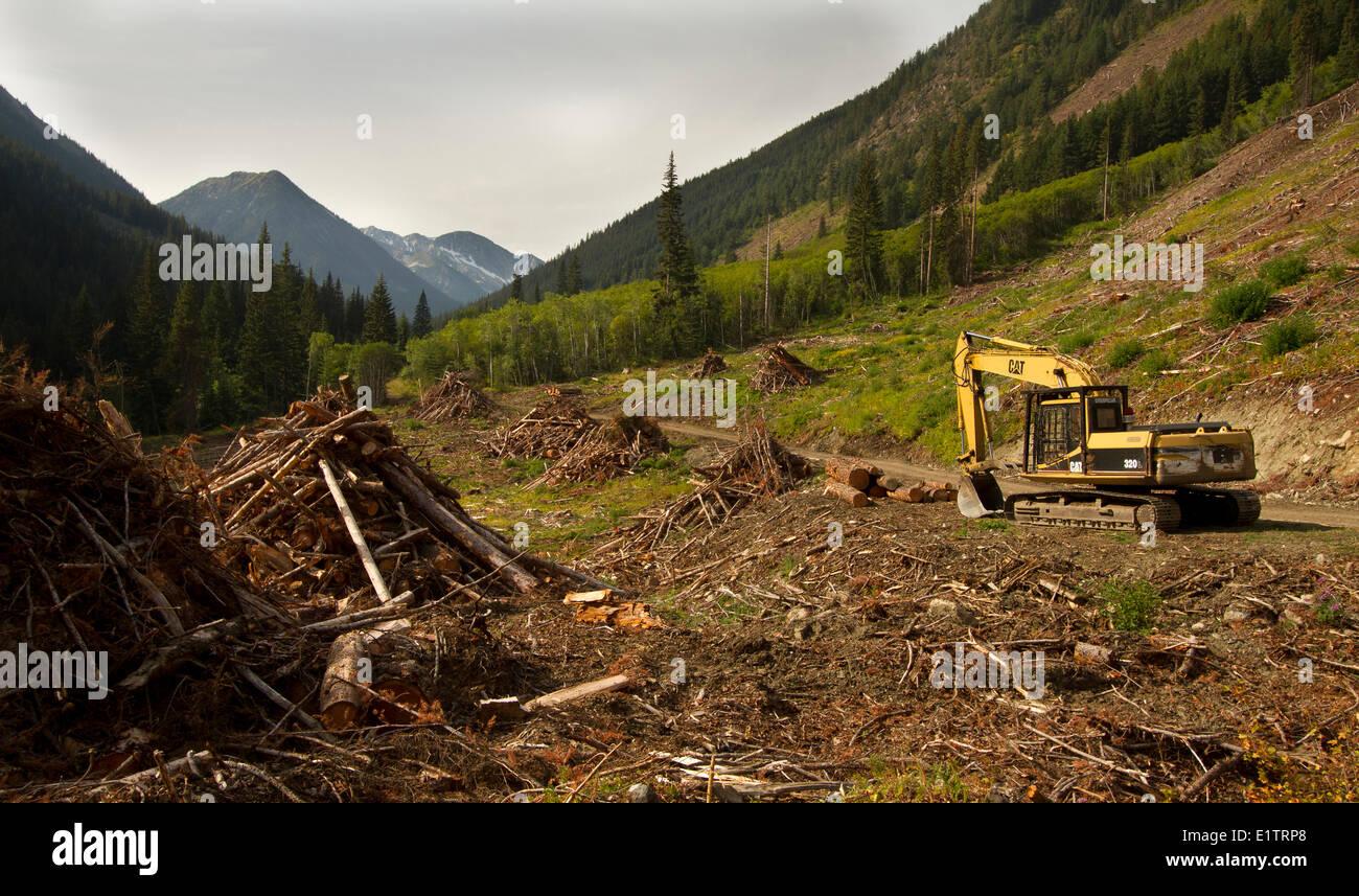 Habitat Loss Stock Photos & Habitat Loss Stock Images - Alamy