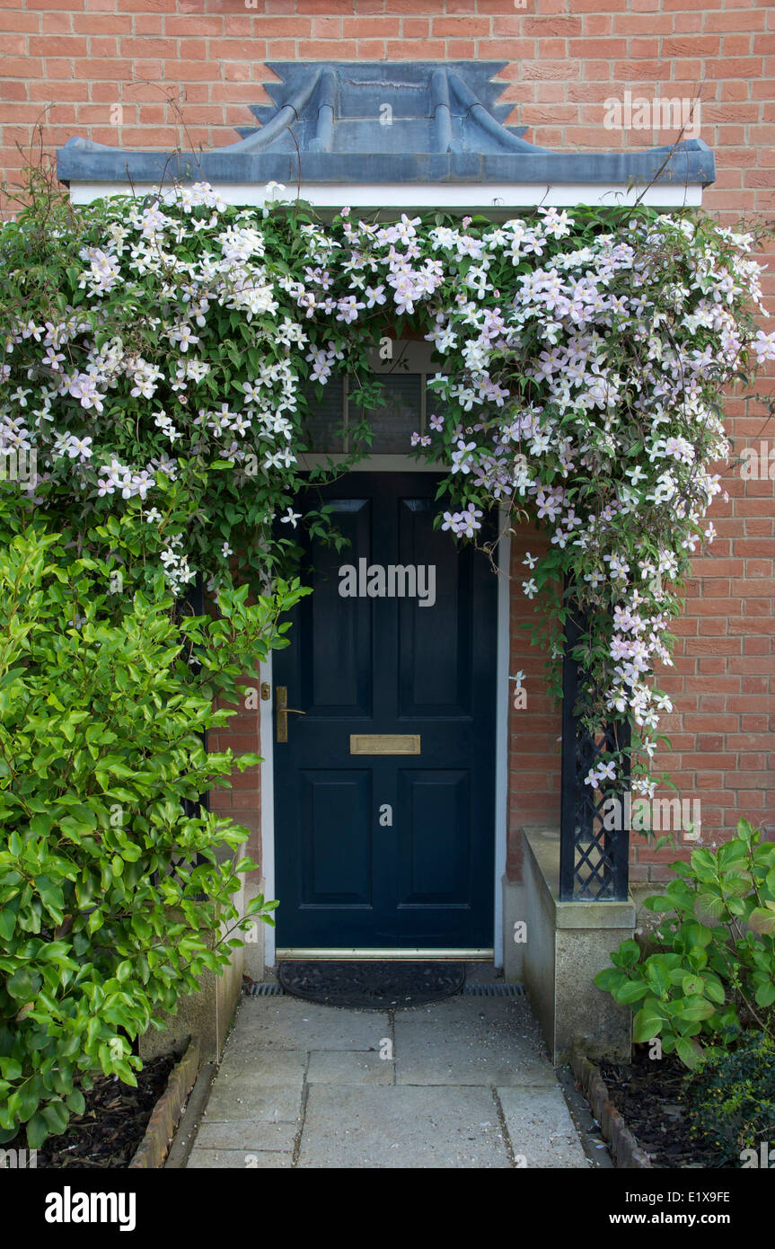 stock photo in flower around the navy blue front door and porch of a newly built house in poundbury dorchester dorset england u201c