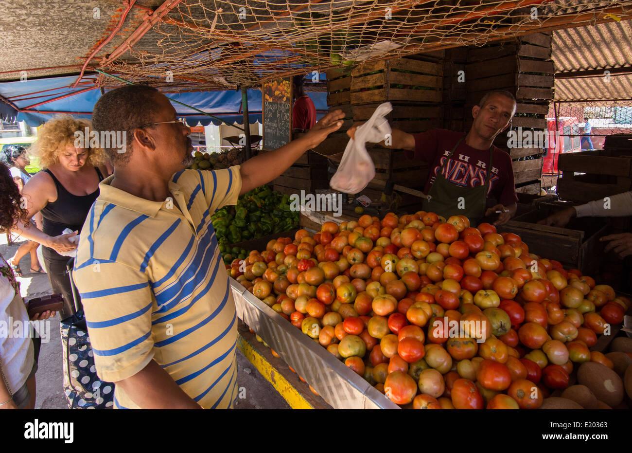 Food Stock Market