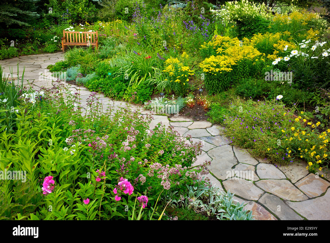 Flower Garden With Foreground Sedums And Stone Path In Betty Ford Alpine  Gardens. Vale Colorado