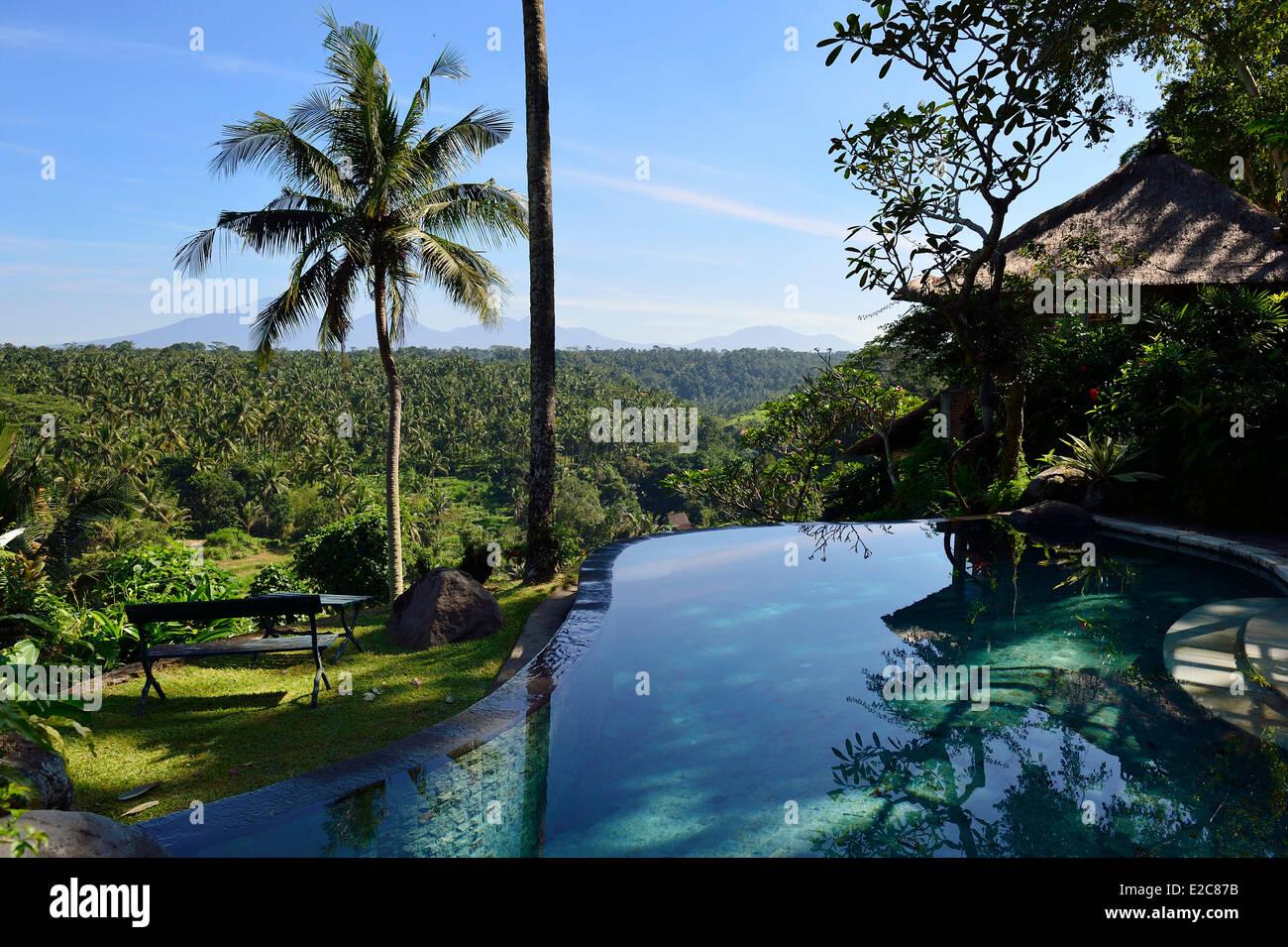 Indonesia bali ubud the luxury hotel taman bebek resort for Luxury resorts in bali indonesia