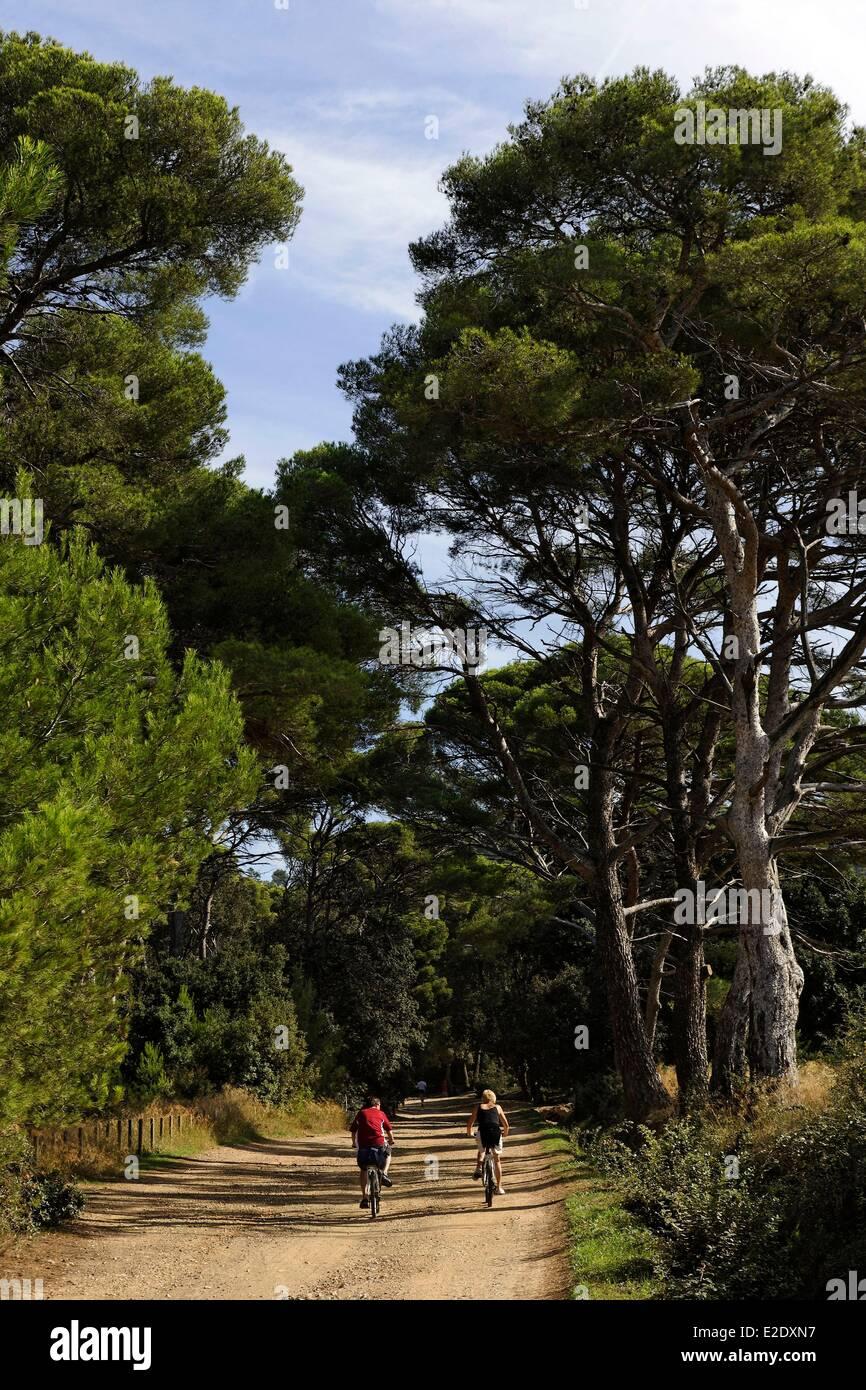 var iles d hyeres parc national de port cros national park stock photo royalty free