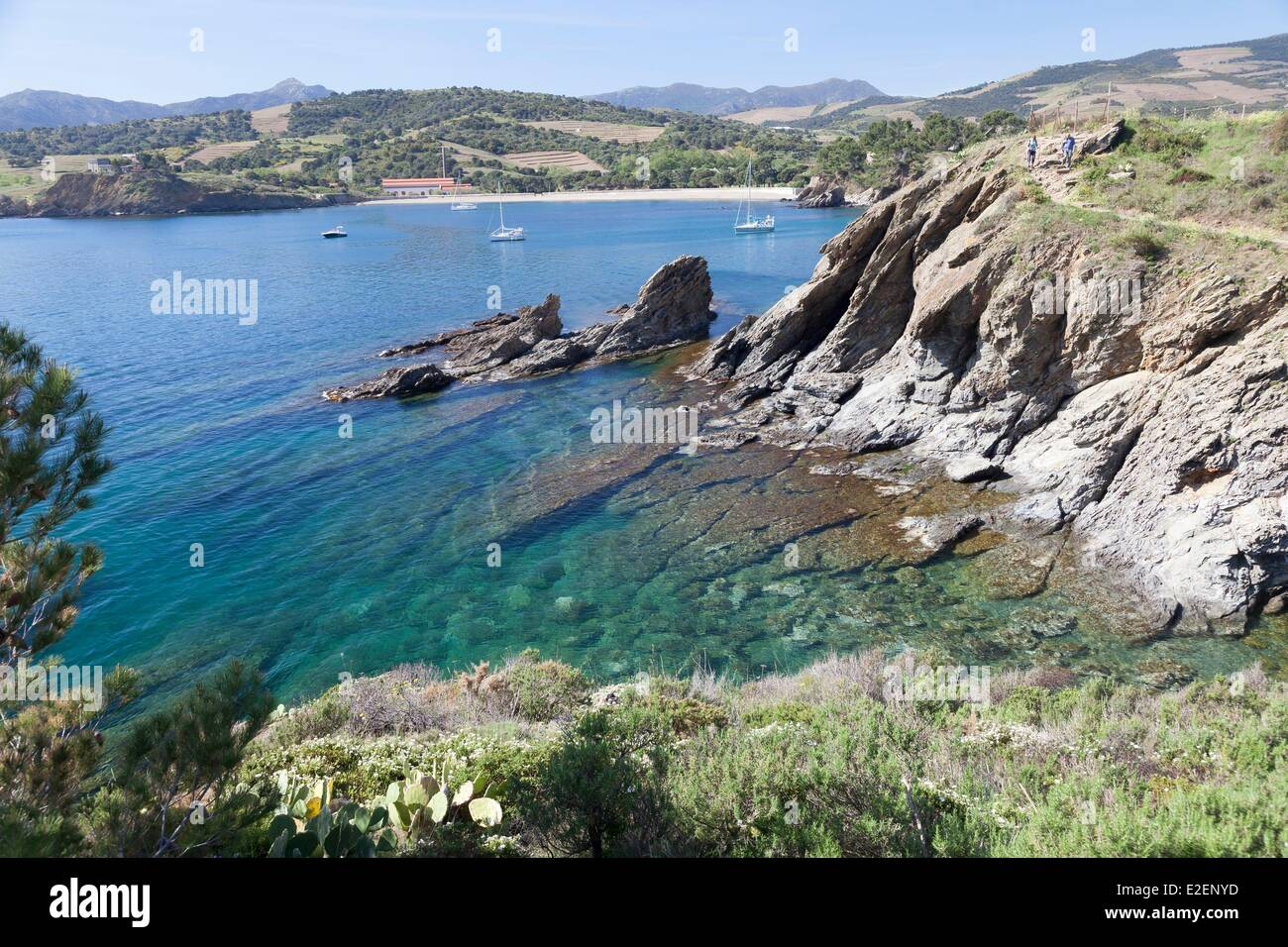 France pyrenees orientales banyuls sur mer cote vermeille paulilles stock photo royalty free - Immobilier port vendres pyrenees orientales ...