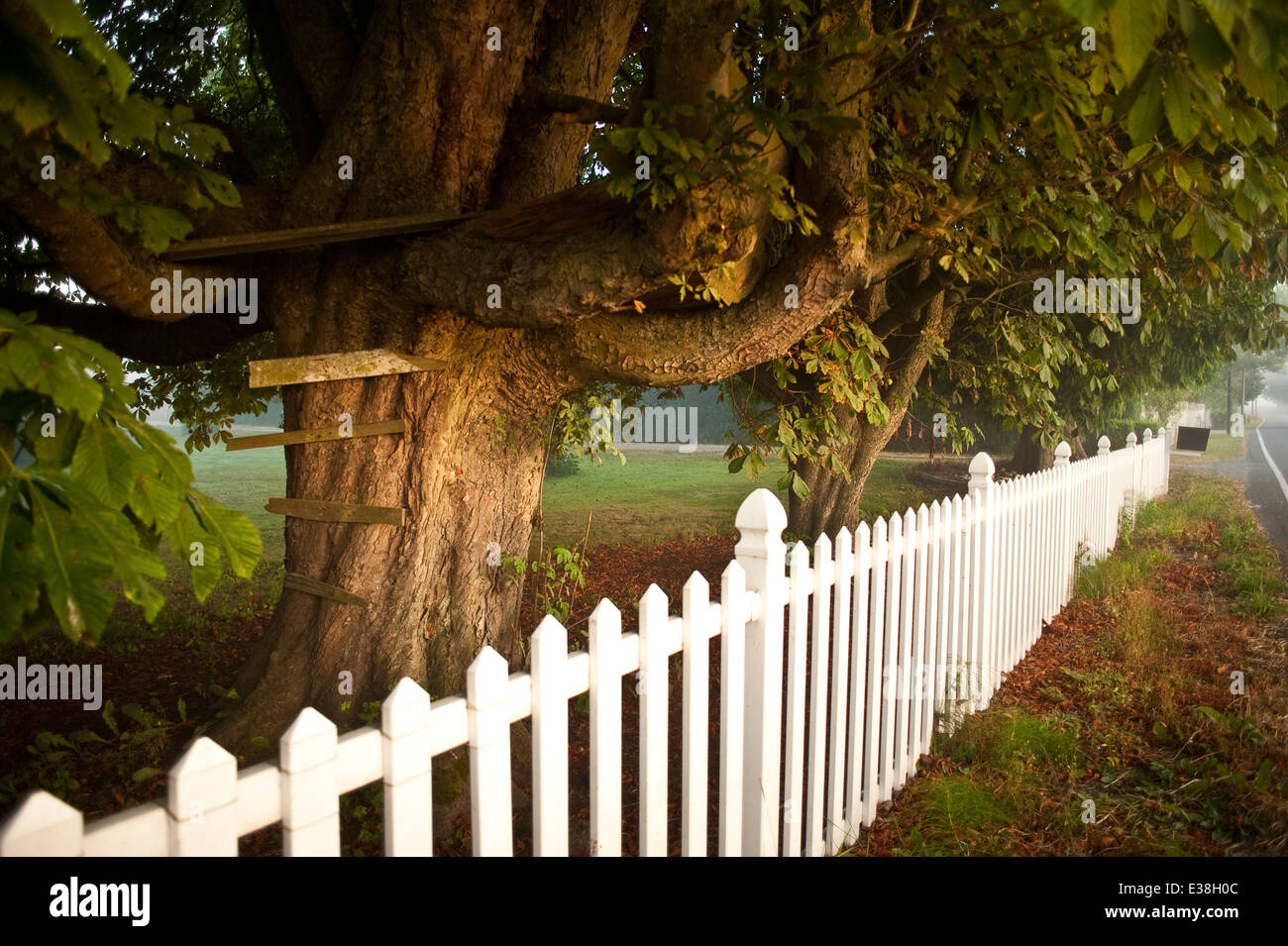 kids tree house along country road stock photo royalty free image