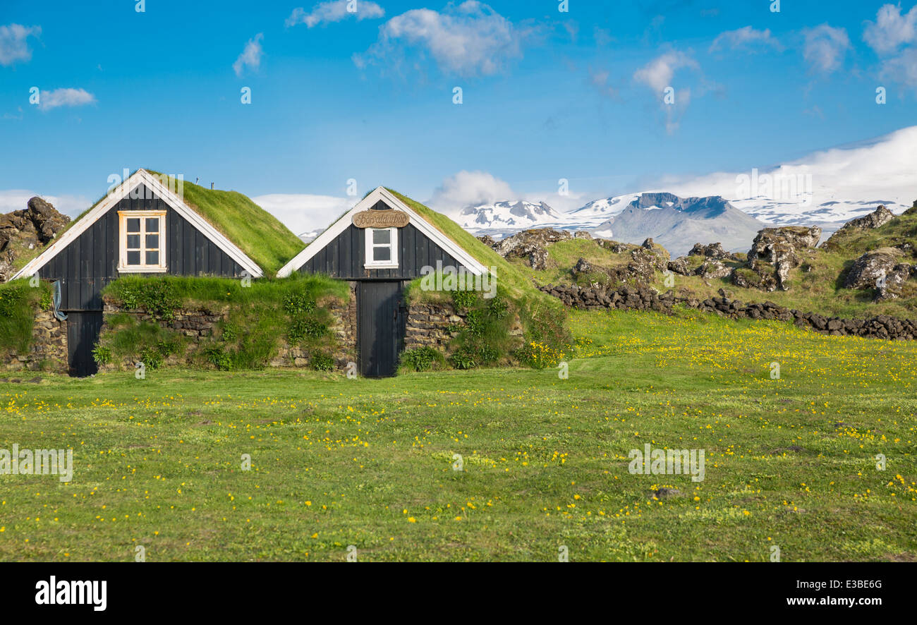 typical scandinavian houses with grass on the roof stock photo stock photo typical scandinavian houses with grass on the roof