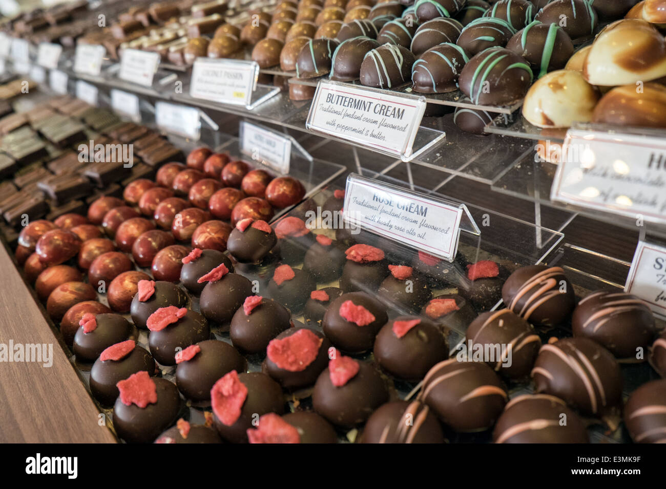 An assortment of gourmet chocolates, labeled & in rows on trays in ...