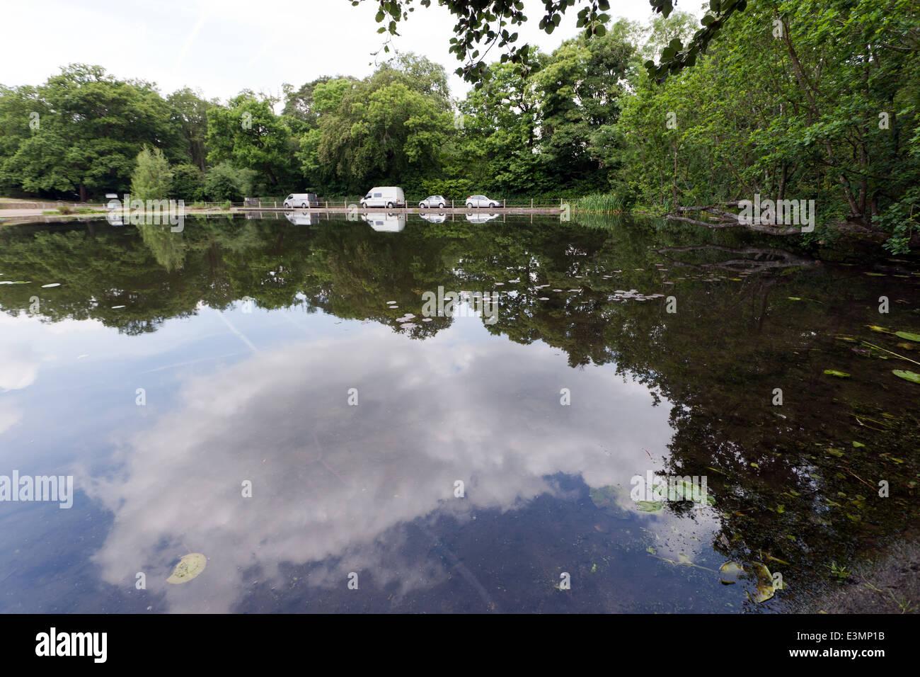 View of fishponds road keston ponds bromley kent stock for Garden pond kent