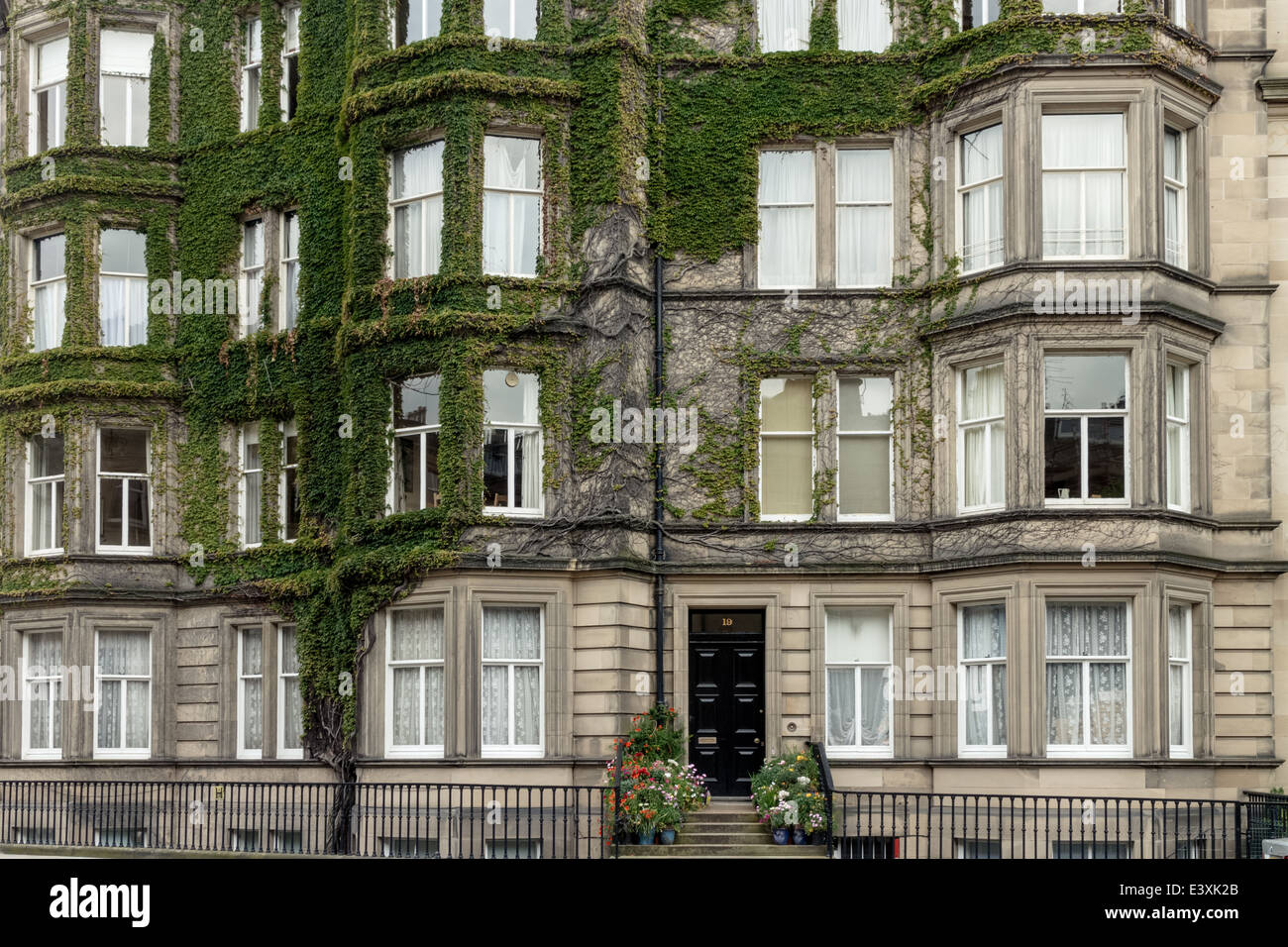 Ivy growing on the exterior of a house in rothesay terrace for 3 rothesay terrace