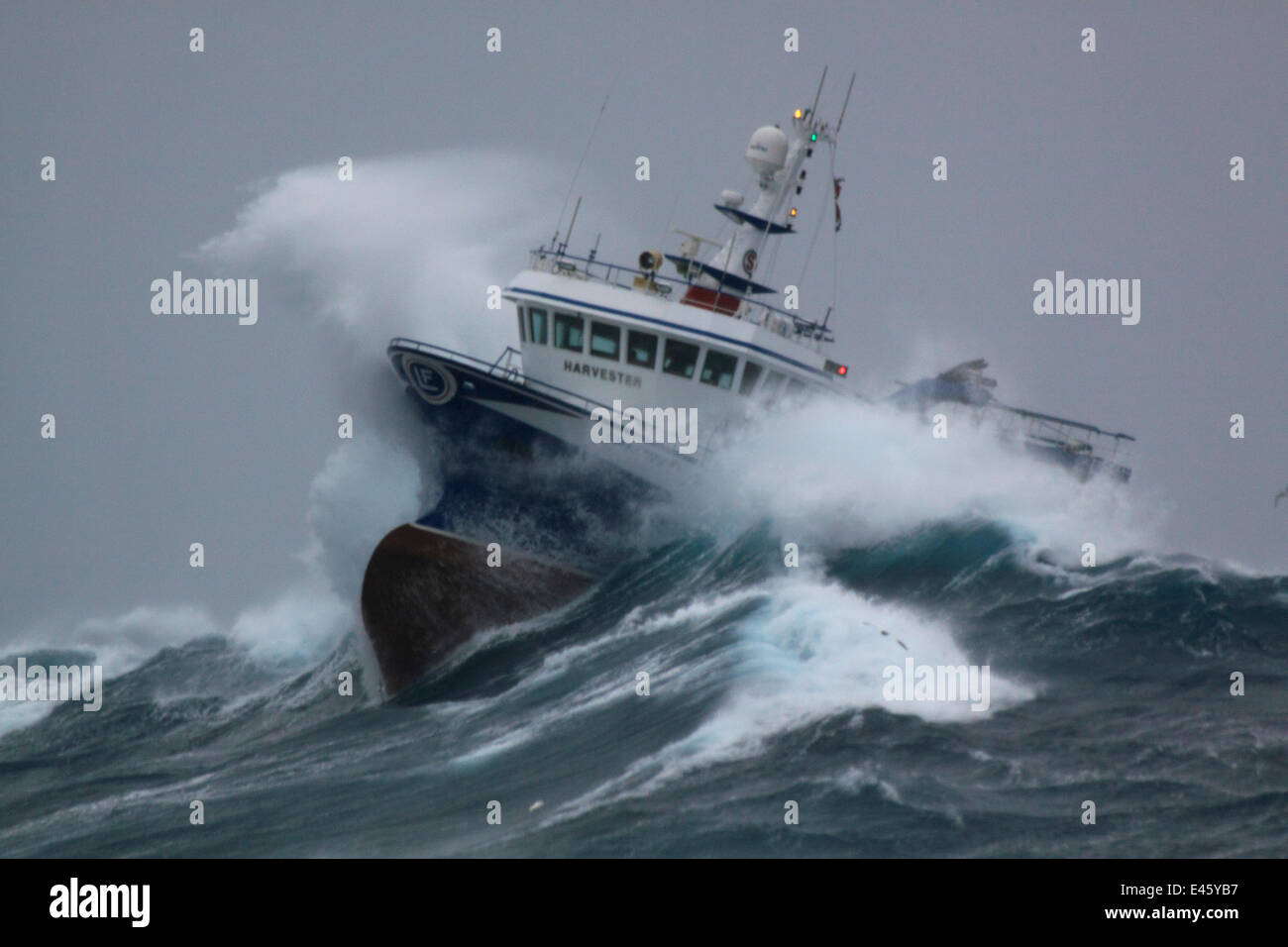 How Heavy Are the Biggest Waves in the Ocean? | HuffPost