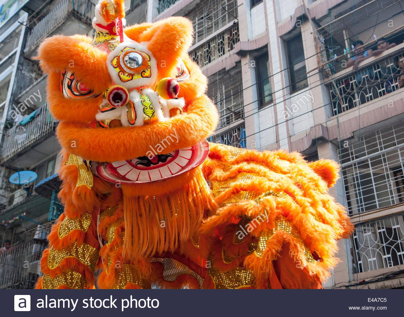 Uncategorized Chinese New Year Lion chinese lunar new year lion dance celebrations spring festival chinatown yangon rangoon myanmar burma asia l