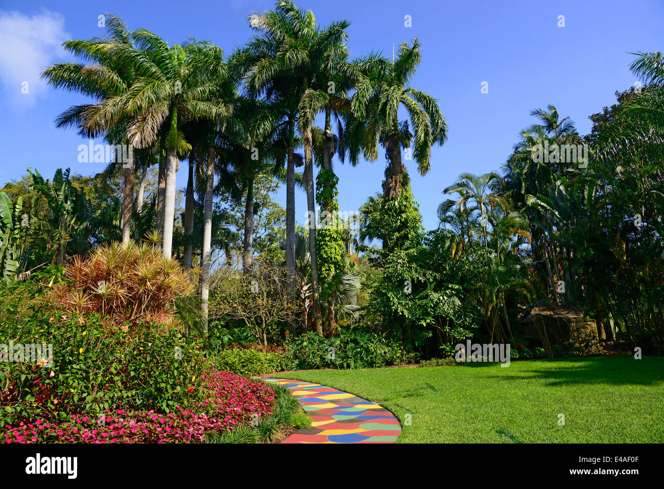 Sunken Gardens Botanical Colorful Path Palm Trees St Petersburg Fl Stock Photo Royalty Free
