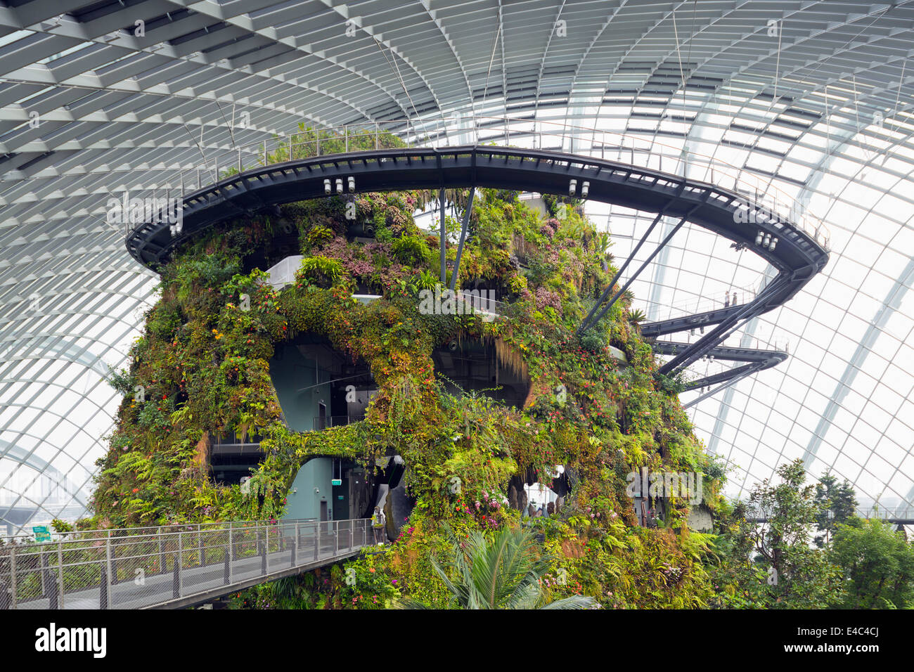 Garden By The Bay Cloud Forest canopy walkway, gardensthe bay, cloud forest, botanic garden