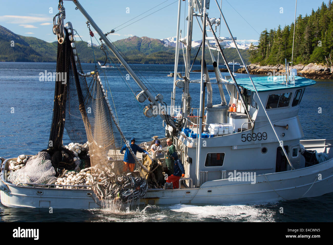 Commercial salmon fishing prince william sound chugach for What is commercial fishing