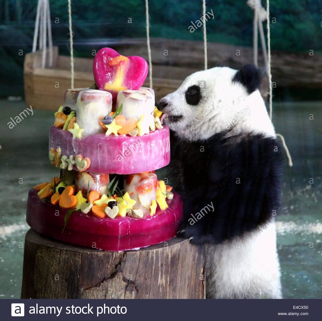 Panda Eating Birthday Cake 72583 Timehd