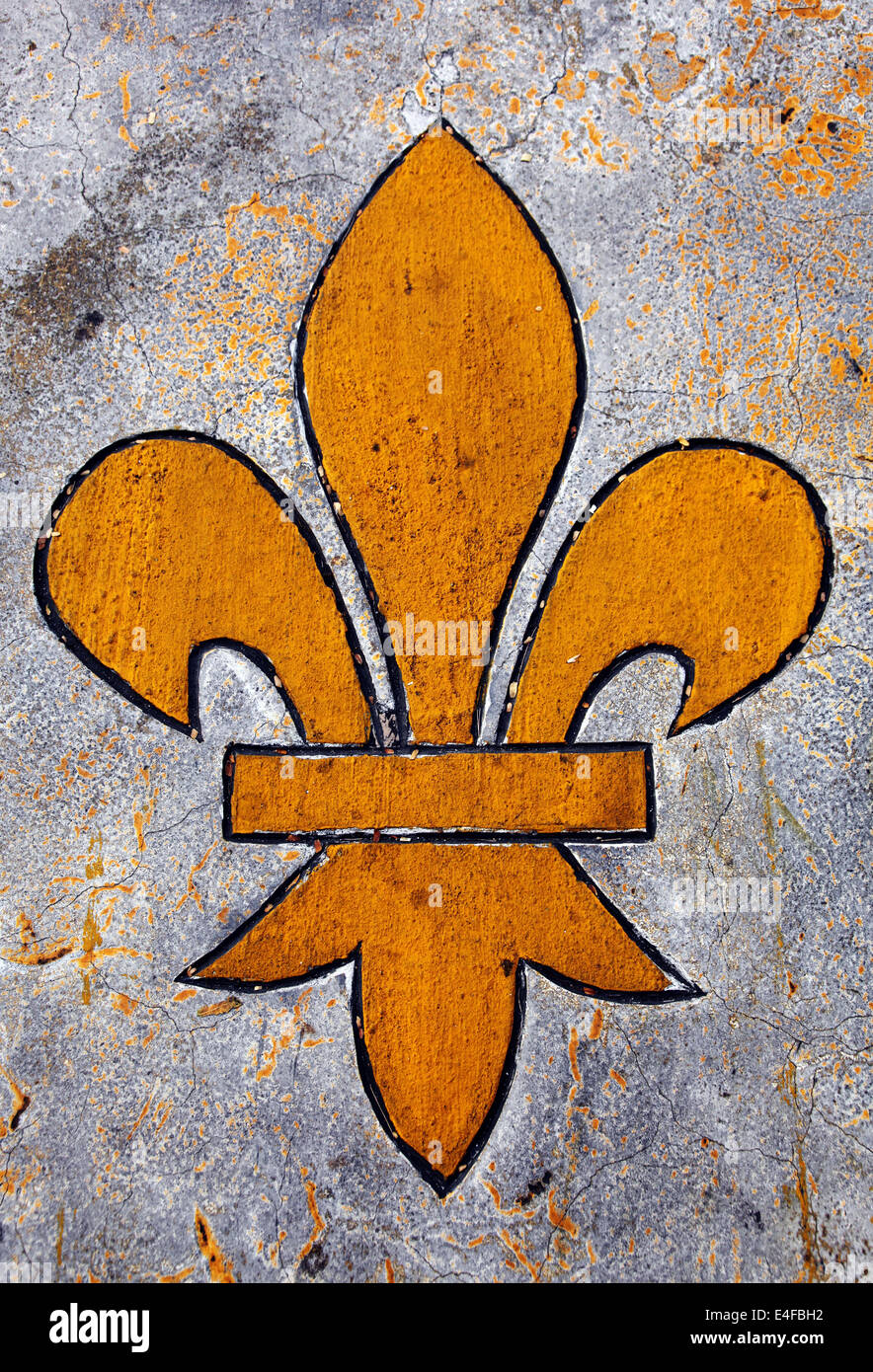 Its a photo of a royal symbol of a golden lily flower its a its a photo of a royal symbol of a golden lily flower its a link to the king queen of france or europe buycottarizona