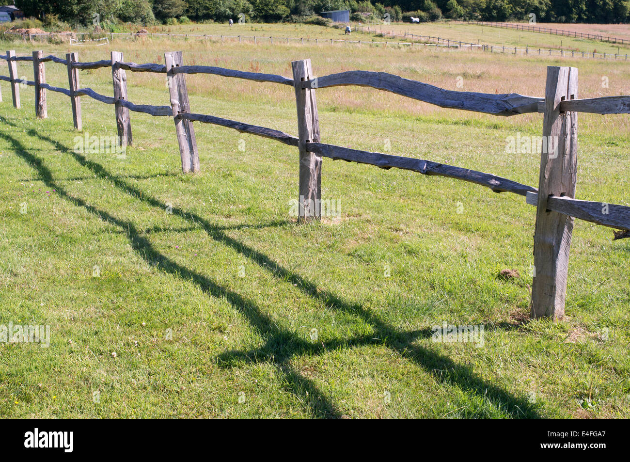 Chestnut timber post and rail fence around field in east Sussex ...