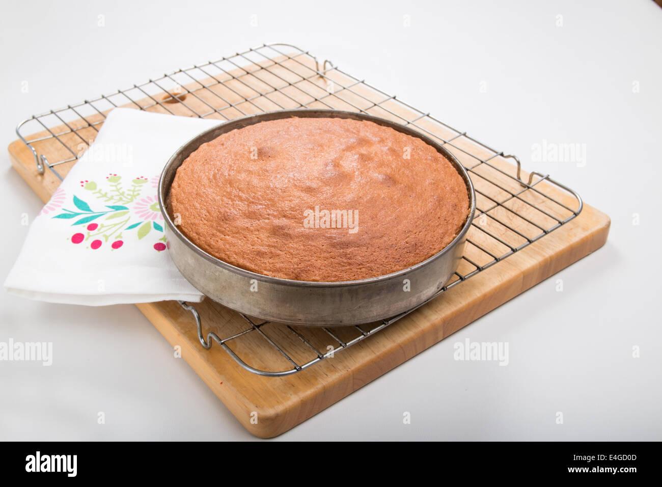 Victoria Cakes Round