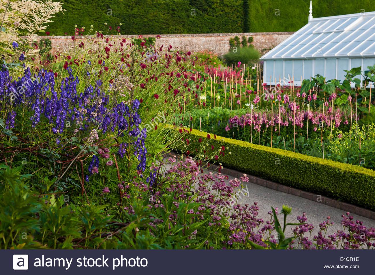 Row Flower Garden : Cut flowers rows growing west dean walled garden sussex