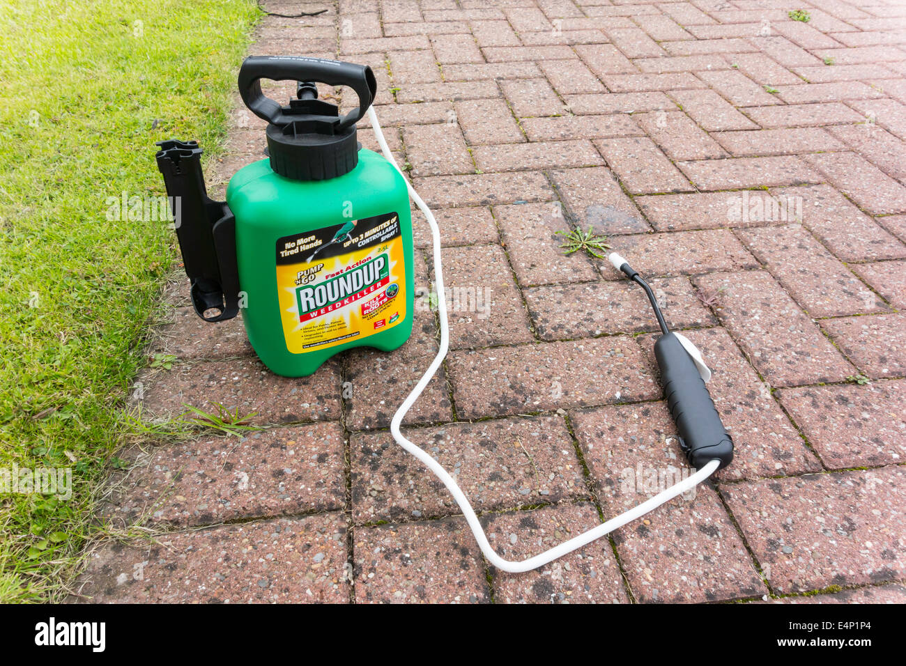 Roundup Weedkiller Applicator For Killing Weeds In Paths Pavements And Driveways