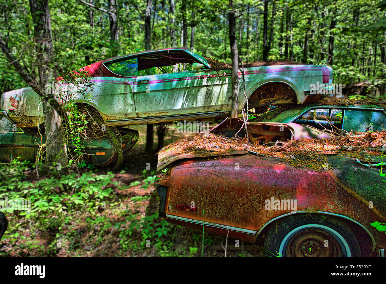 rusted junk cars and trucks in old car city in white georgia stock photo royalty free image. Black Bedroom Furniture Sets. Home Design Ideas