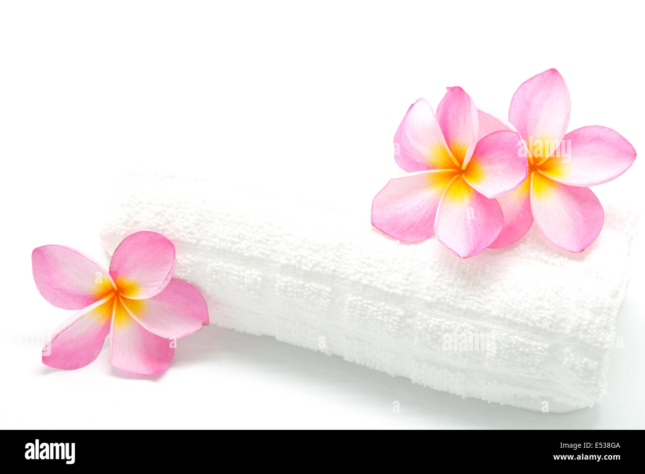Pink plumeria flower with a white towel in spa condition stock photo pink plumeria flower with a white towel in spa condition mightylinksfo Choice Image