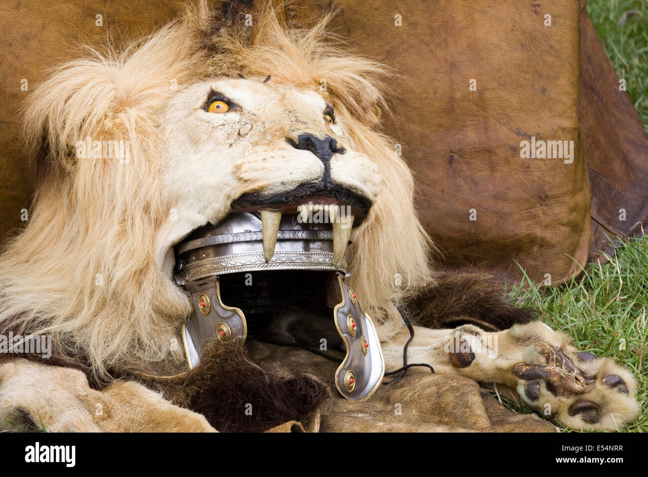 in the skin of a lion The struggle of postmodernism and postcolonialism in michael ondaatje's in the skin of a lion gilbert mcinnis, postgraduate student, laval university, canada this web essay is based upon a paper the author wrote for professor neil bissoondath's postcolonial literature ii [ang-64699a], laval university.