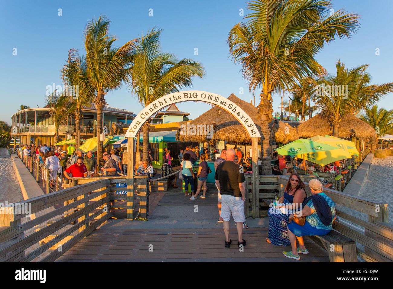 sharkys venice florida - photo#20