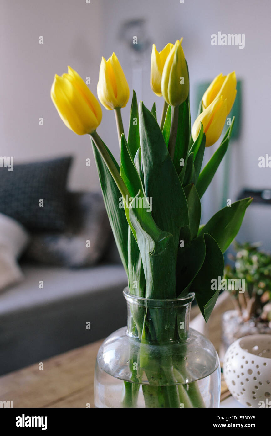 Vase of tulips on wood coffee table in the living room with vase of tulips on wood coffee table in the living room with blurred couch in the background floridaeventfo Gallery