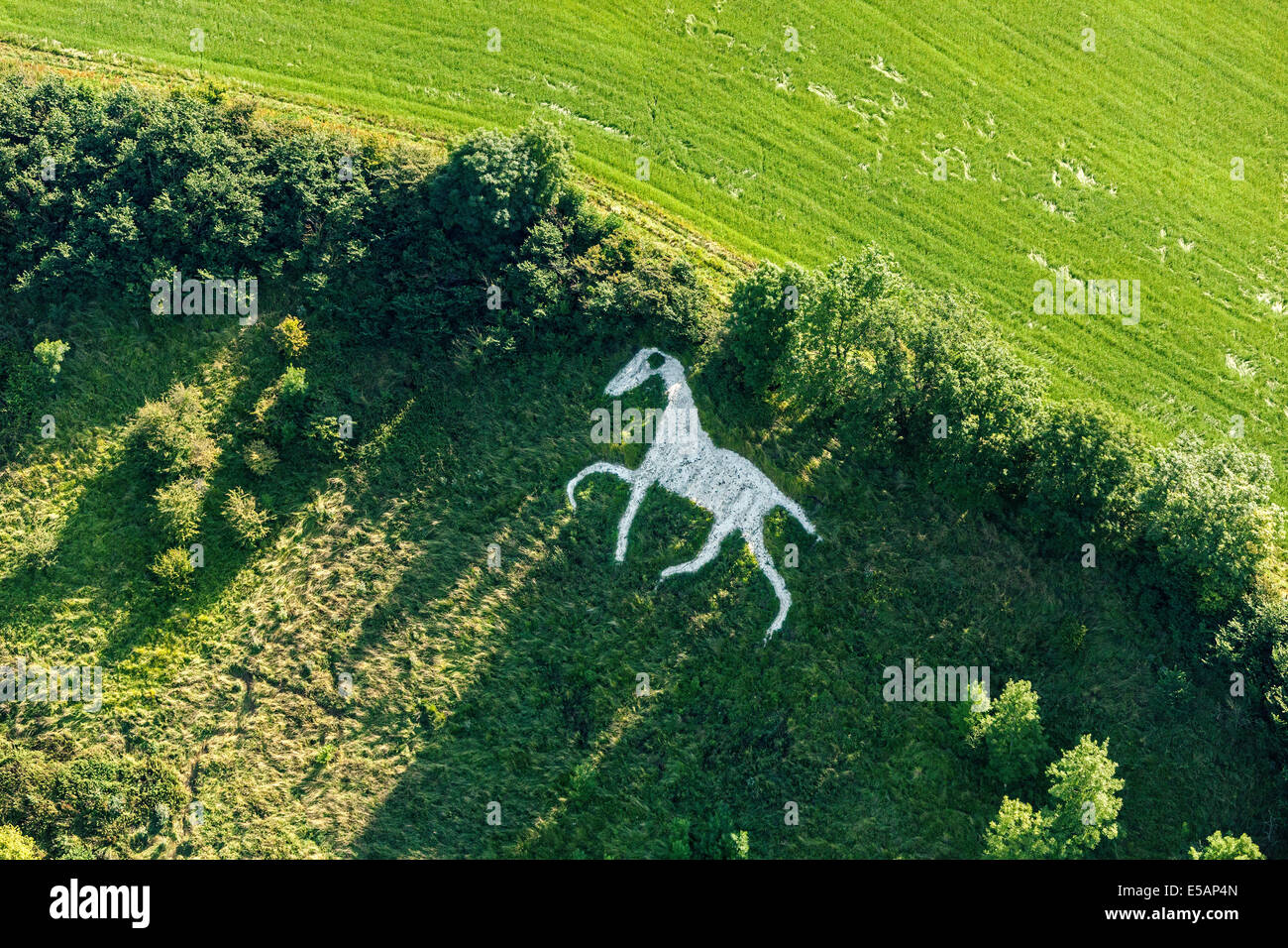 Fascinating Hinton Stock Photos  Hinton Stock Images  Alamy With Remarkable Aerial View Of The White Horse At Broad Town Or Broad Hinton Nr Royal  Wootton With Easy On The Eye White Pebbles Garden Also Fish Garden Ornaments In Addition Home Pesticides For Garden And Waterproof Garden Furniture Covers Uk As Well As A Secret Garden Additionally Clearance Rattan Garden Furniture From Alamycom With   Remarkable Hinton Stock Photos  Hinton Stock Images  Alamy With Easy On The Eye Aerial View Of The White Horse At Broad Town Or Broad Hinton Nr Royal  Wootton And Fascinating White Pebbles Garden Also Fish Garden Ornaments In Addition Home Pesticides For Garden From Alamycom