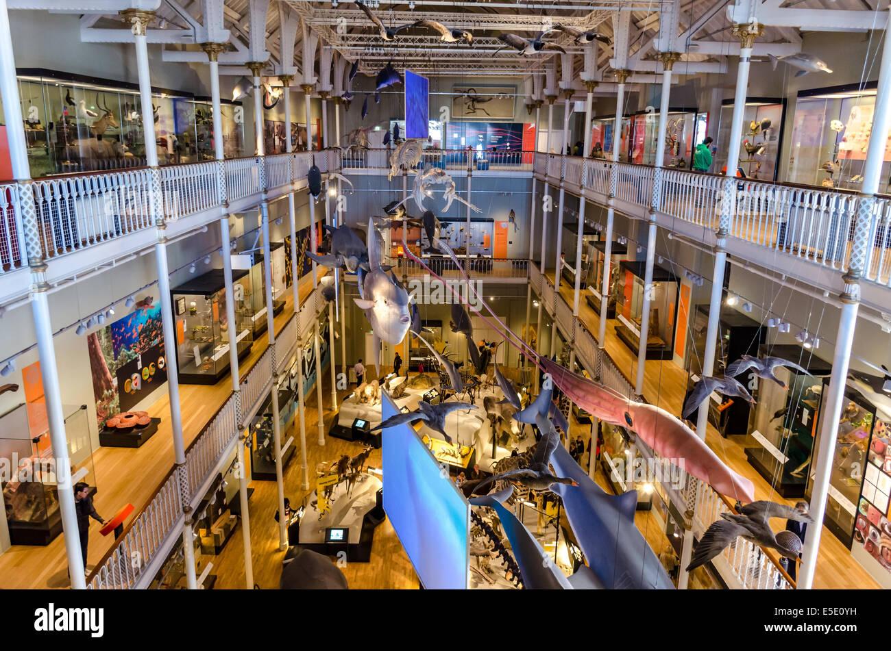 Edinburgh Natural Science Museum