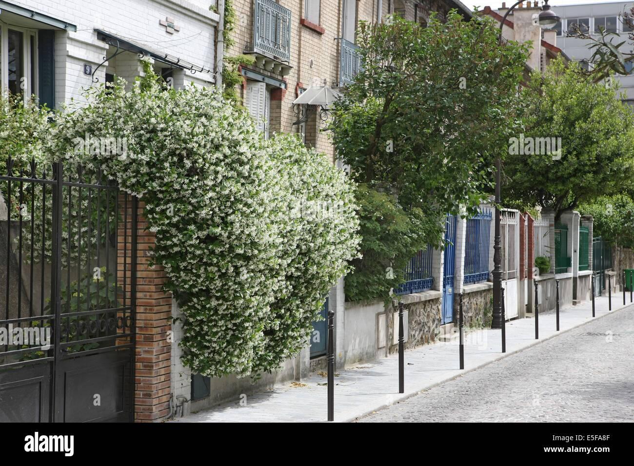 France, Ile De France, Paris, 13e Arrondissement, Villa Daviel, Maisons  Individuelles Avec Jardin, La Butte Aux Cailles, Date : 2011 2012