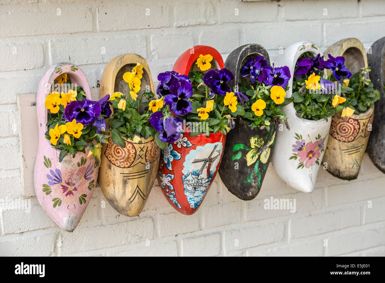 netherlands marken violets in wooden clogs as decoration stock