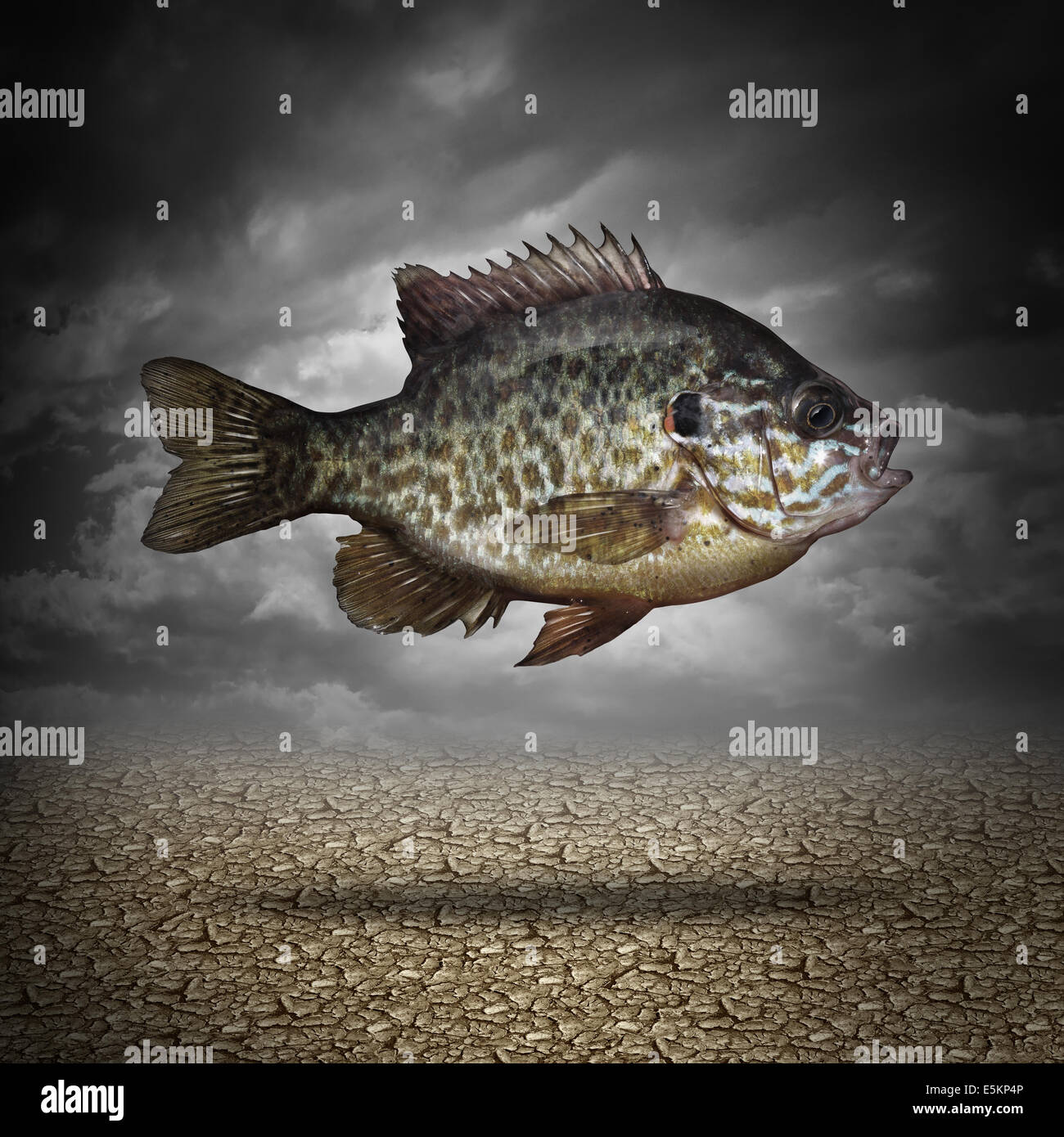 Symbol for adapting for Dream about fish out of water