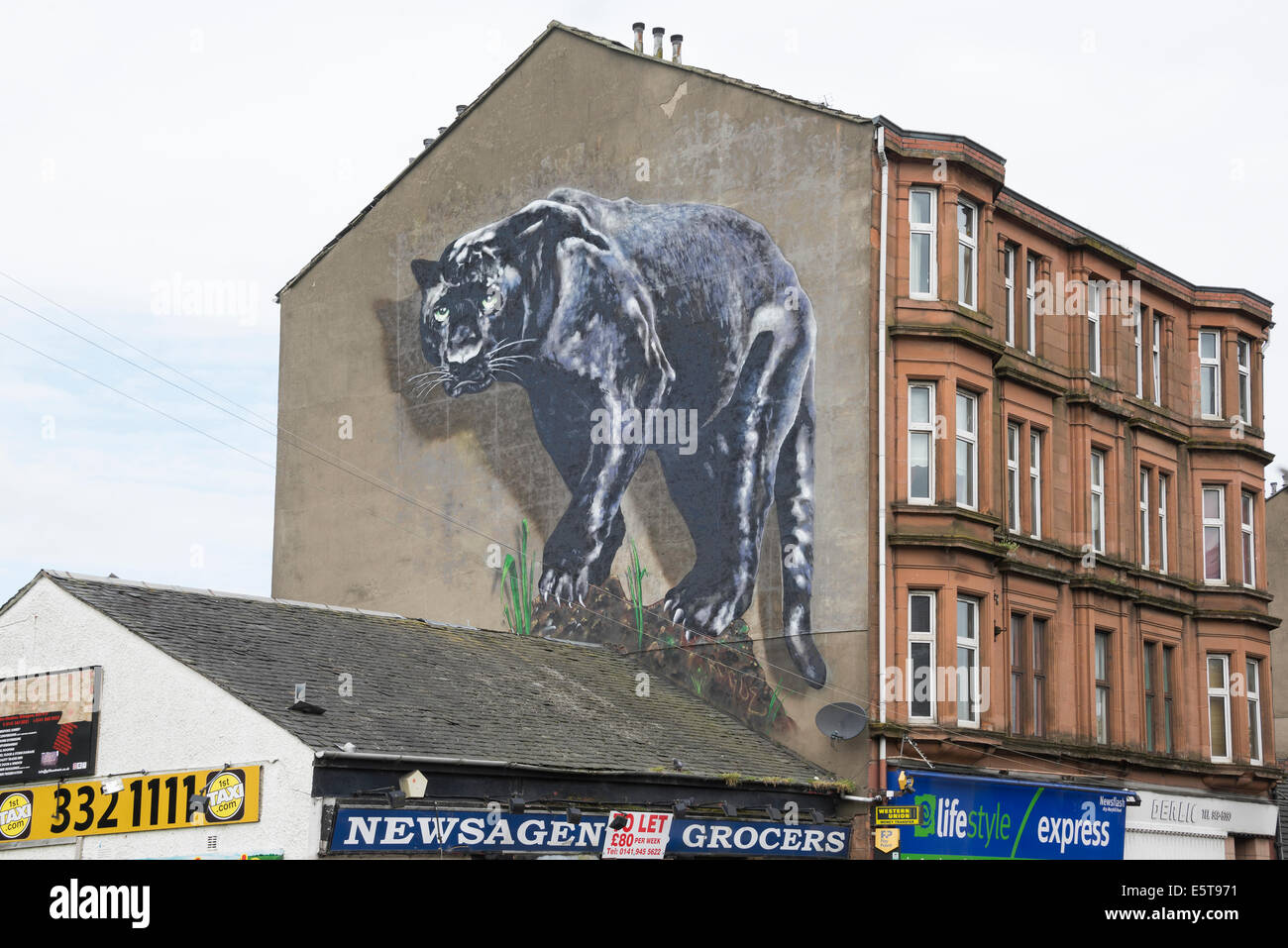 Black panther mural on gable end of tenement property in for Black panther mural